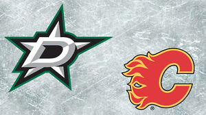 Dallas Stars VS Flames  Mar 17  Right on the Blueline  2nd Bowl