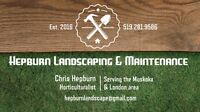Muskoka Cottage Spring Cleanup and Landscaping