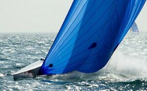 Spinnaker (made for a 26' Nonsuch) - only used twice