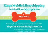 moble microchipping of pets, dogs, cats, ferrets, rabbits, microchip implanter