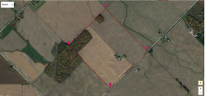 Middlesex Centre,100 Acres, Systematically Tiled London Ontario image 3