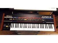 Roland juno - 6 vintage synthesizer