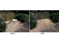 Stump Grinding, Stump removal, Shrub removal Tree Surgeon Tree removal