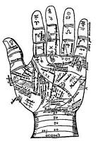 $20 Palm Reading by a professional Palmist