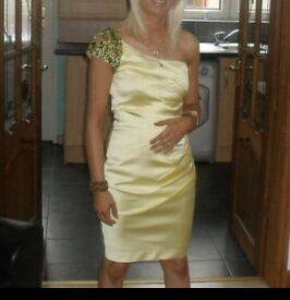 Ladies lemon Jane Norman dress size 6
