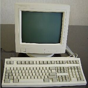 ISO: COMPUTER MONITOR (1990'S)