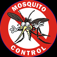Would you like a mosquito proof yard this summer?