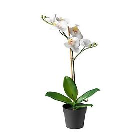 Artificial Orchid white plant and pot