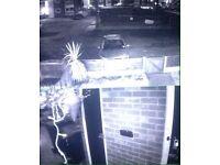 CCTV camera system £265