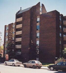 Place Cam Helene *Remodeled 1 Bedroom Suite*