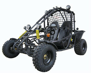Free-Shipping-150cc-Adult-Size-Go-Kart-Dune-Buggy-Auto-Reverse-Big-Size-New