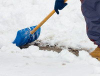 Snow Removal / Lawn Care