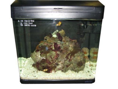 Boyu Aquarium   eBay