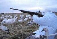 Snow goose guided hunt