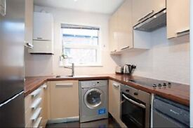 Massive double f/f room in stunning flat+all mod cons. 15 mins to Central London, garden + parking.