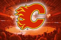 2 good, well priced tickets for February and March Flames games