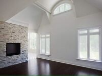 Need Painting Done? Professional Painter