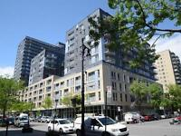 Le Serville, 3 1/2 in downtown Mtl,$1400