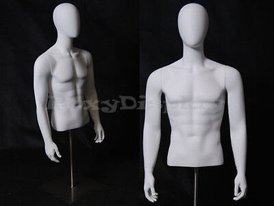 Table Top Egghead Male Mannequin Torso With Nice Figure And Arms Egtmsa-md