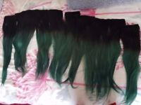 """20-22"""" Human Hair Clip In Hair Extentions Black/Green - give me an offer"""