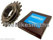 Single Speed Freewheel