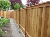 Fence repairs, removal, installation. Wood or chain link