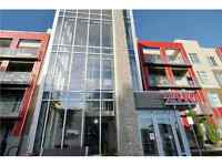 Fully Furnished Modern Condo Windermere RENTAL INVESTMENT!