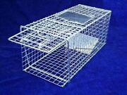 Humane Rabbit Traps