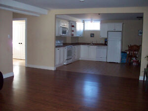 Basement Apartment for Horse owner