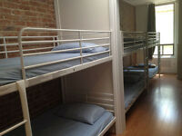 MİXED DORMS TO SHARE 210$/ WEEKLY OR 35$ A NİGHT
