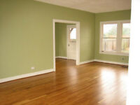 Renovation team (painting, flooring, tiling, capentry)