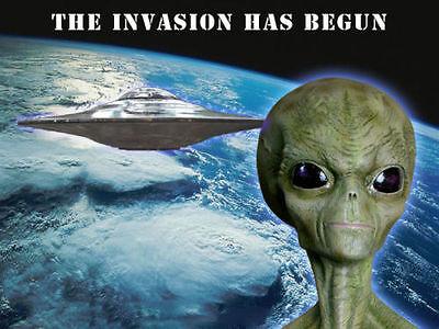 Area 51, Alien Bust, The Grey's,  Roswell, UFO, believer, model kit.