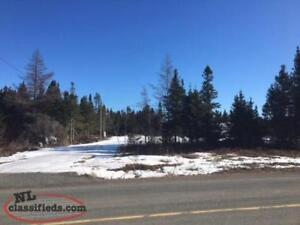 A GREAT PARCEL OF LAND WITH PLENTY OF PRIVACY