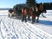 Urlaub Im Harz