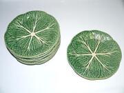 Cabbage Plates