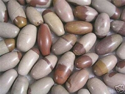 Tantric Shiva Lingam stones from the Narmada,India 5 stones per lot