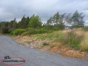 Building Lot For Sale in Blaketown