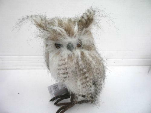 Owl Feathers   eBay