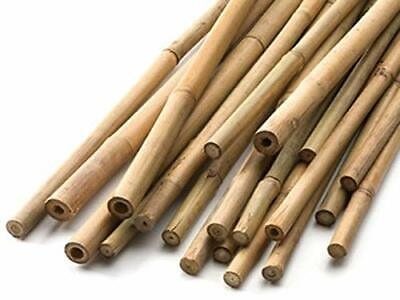 Heavy Duty Bamboo Canes Strong Garden Sticks Growing Vegetables Flowers Support ()