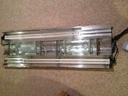Metal Halide Lights