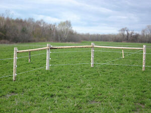 Gallagher fencing and Pasture and Hay Seed!