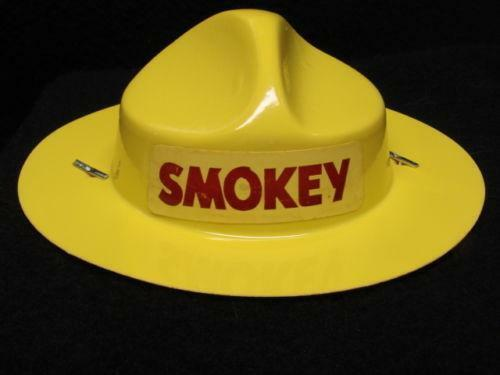 70e6e6ab8c8 Smokey Bear Hat