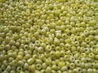 Unbranded Seed Jewellery Beads