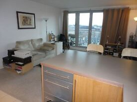 Spacious 1 Double bedroom apartment-Residents Gym-24/7 Concierge -