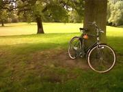 Mens Dutch Bike