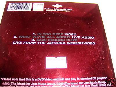 SUM 41-IN TOO DEEP UK NEAR MINT DVD