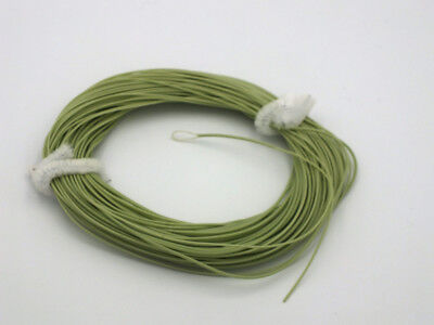FLY LINE Weight Forward Floating 3WT Loop end, Moss Green slick finish 85' LN417 (Weight Forward Floating)