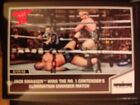 Wrestling Trading Cards & Contenders 2013 Season