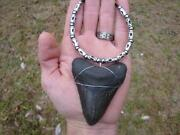 Shark Teeth Jewelry