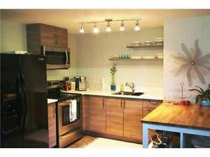 2 bedroom basement suite on beautiful Grand Blvd, North Vancouv